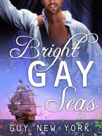 The Bright Gay Seas