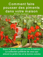 Comment faire pousser des piments dans votre maison. Dans le jardin, en pot ou sur le balcon