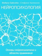 Нейропсихология: Основы нейропсихологии и области применения