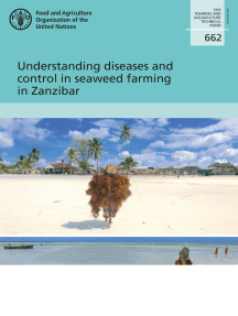 Understanding Diseases and Control in Seaweed Farming in Zanzibar