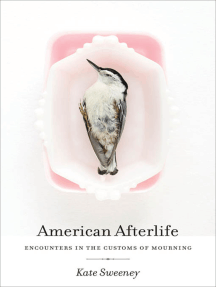 American Afterlife: Encounters in the Customs of Mourning