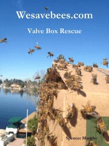 Wesavebees.com: Valve Box Rescue