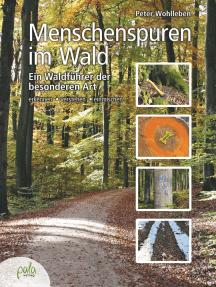 Menschenspuren im Wald: Ein Waldführer der besonderen Art - erkennen, verstehen, einmischen