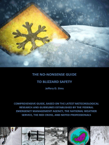 The No Nonsense Guide to Blizzard Safety