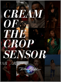 Cream of the Crop Sensor: A Simplified Guide for the Beginner Photographer