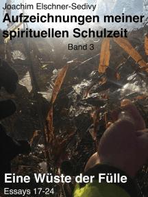 Eine Wüste der Fülle. Essays 17-24: Aufzeichnungen meiner spirituellen Schulzeit, #3