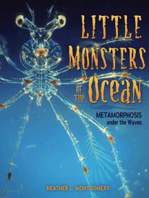 Little Monsters of the Ocean: Metamorphosis under the Waves