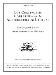 Los cultivos de cobertura en la agricultura en laderas