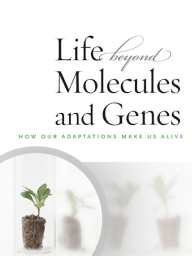 The Life Beyond Molecules and Genes